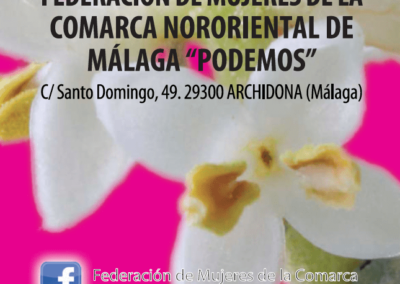 Distinción Día de Andalucía 2017 a Federación Comarca Nororiental